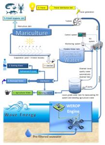 WEROP process schematic diagram commercial